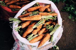 Как нужно хранить морковь в погребе