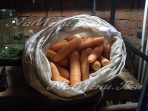 Хранение моркови в погребе в мешке